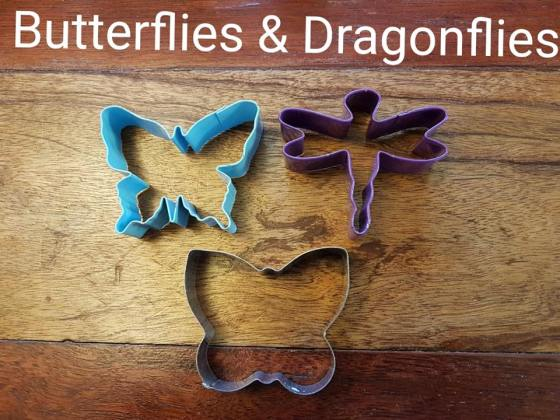 ButterfliesAndDragons